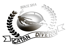 Catan Divers Retina Logo