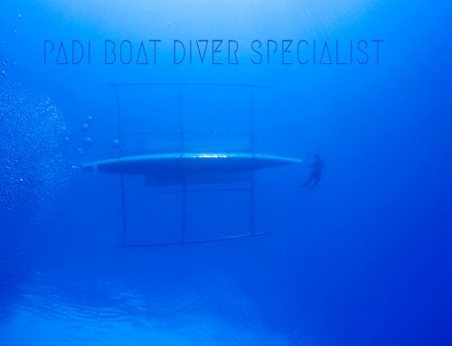 PADI Boat Diver Specialty Course