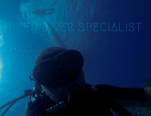 Deep Diver Specialty Course